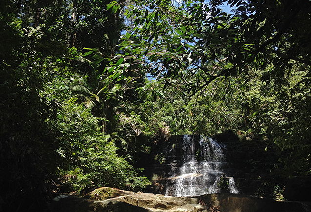 Borneo6_blog