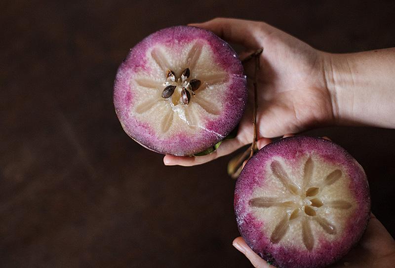 milkfruit_1