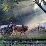 10 Tipps für Myanmar