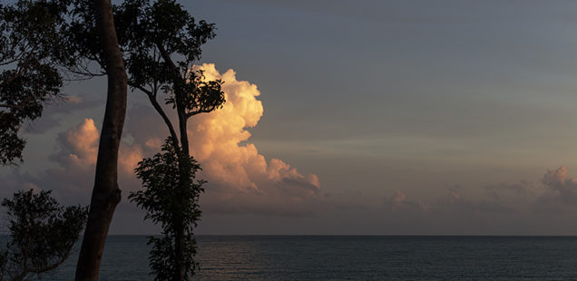 Ruheoase: Ream-Nationalpark